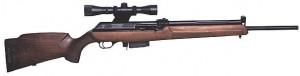 rifle semiautomatico