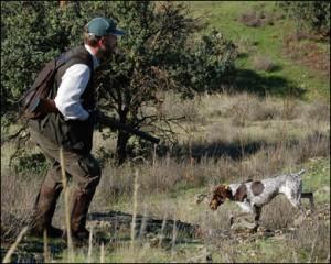 caza menor con perro