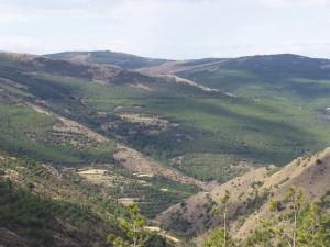 monterias en almeria