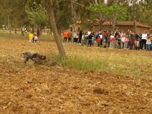 actividad juvenex, caza para los jóvenes