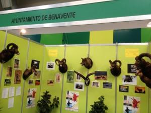 Feria caza Benavente en Cazaworld