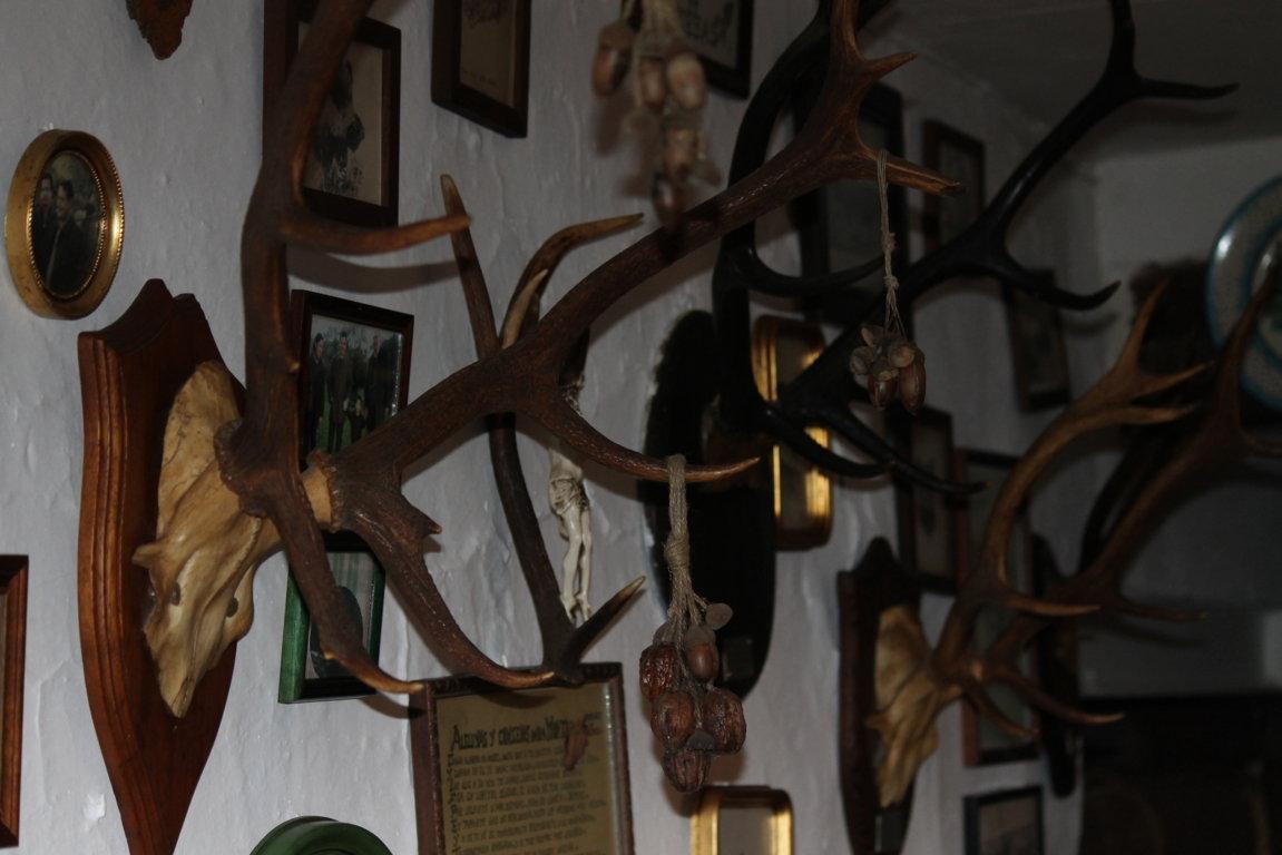 la caza y la navidad