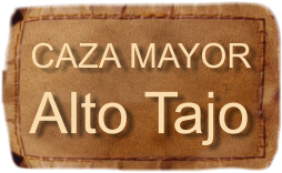 Caza Mayor Alto Tajo