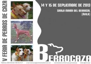 cartel berrocaza 2013