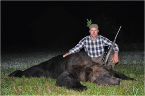 oso en Estonia