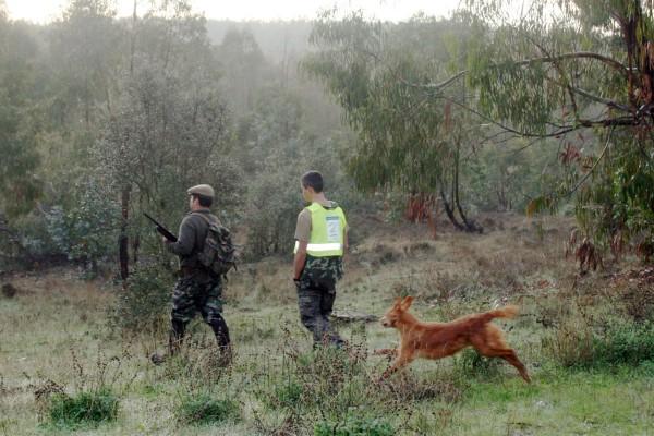 Campeonato de caza menor con perro extremadura