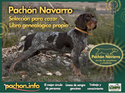 Certamen Pachón Navarro