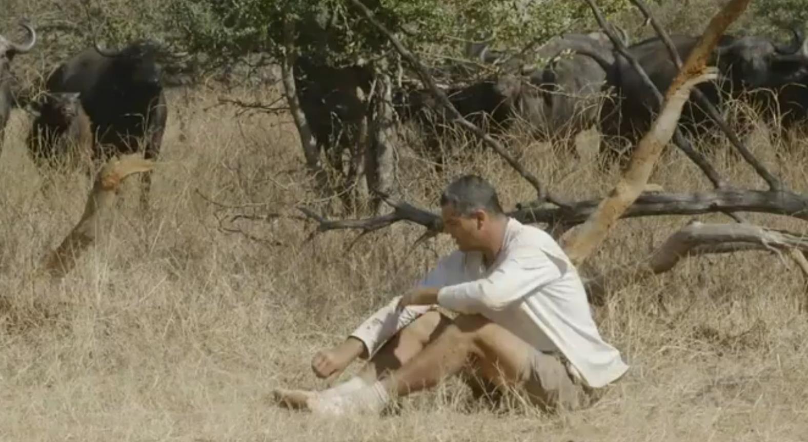 Frank de la Jungla insulta gravemente a los cazadores
