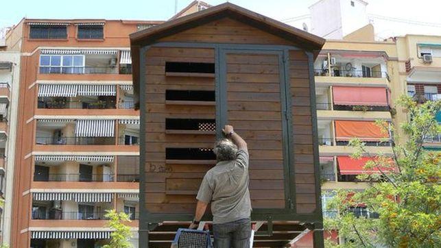 El Ayuntamiento de Valencia quiere controlar las poblaciones de paloma con pienso esterilizante.