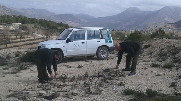 Intervenidos-caza-prohibidos-Almeria-Granada