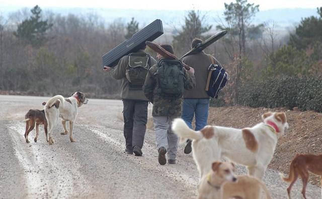 cazadores sorianos