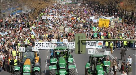 Manifestacion 2008
