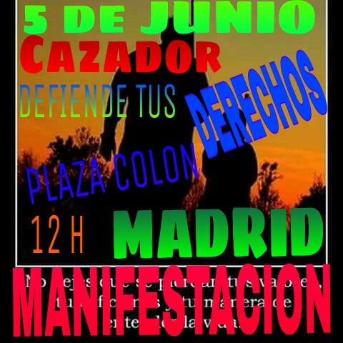 Manifestacion Madrid 5 junio 2016