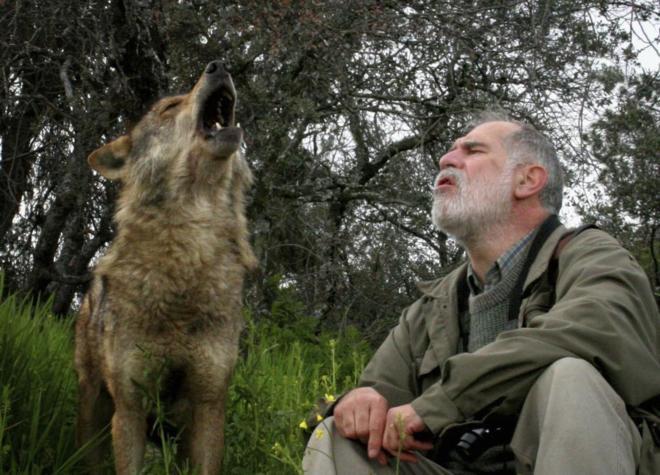 carlos sanz lobo