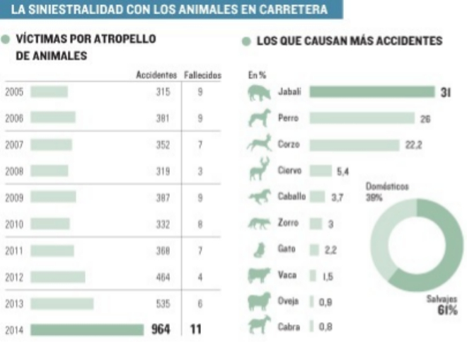 siniestralidad animales