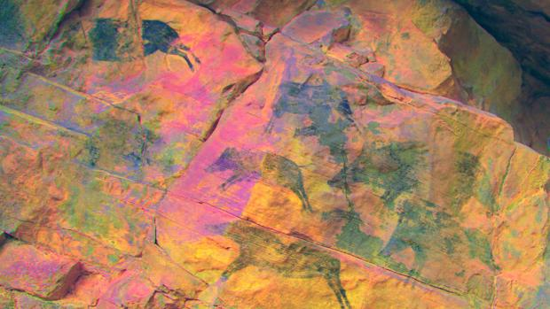pintura rupestre jabalies