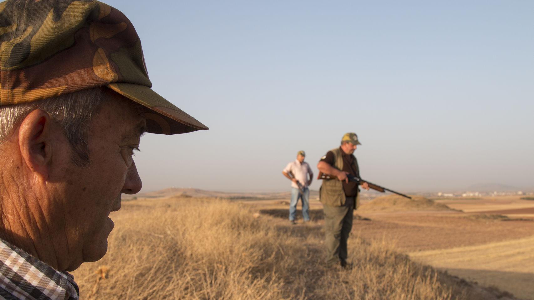 Se organizan batidas diarias de hasta 60 cazadores para intentar acabar con la plaga. - Jorge Barreno