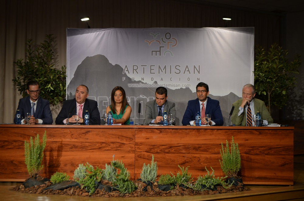 presentacion-de-artemisan-1
