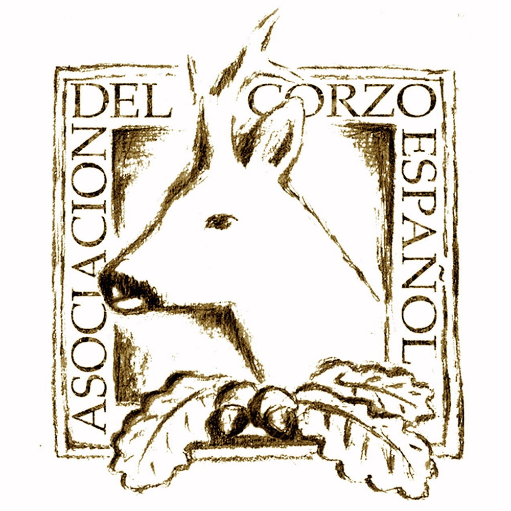 logotipo-asociacion-del-corzo-espanol