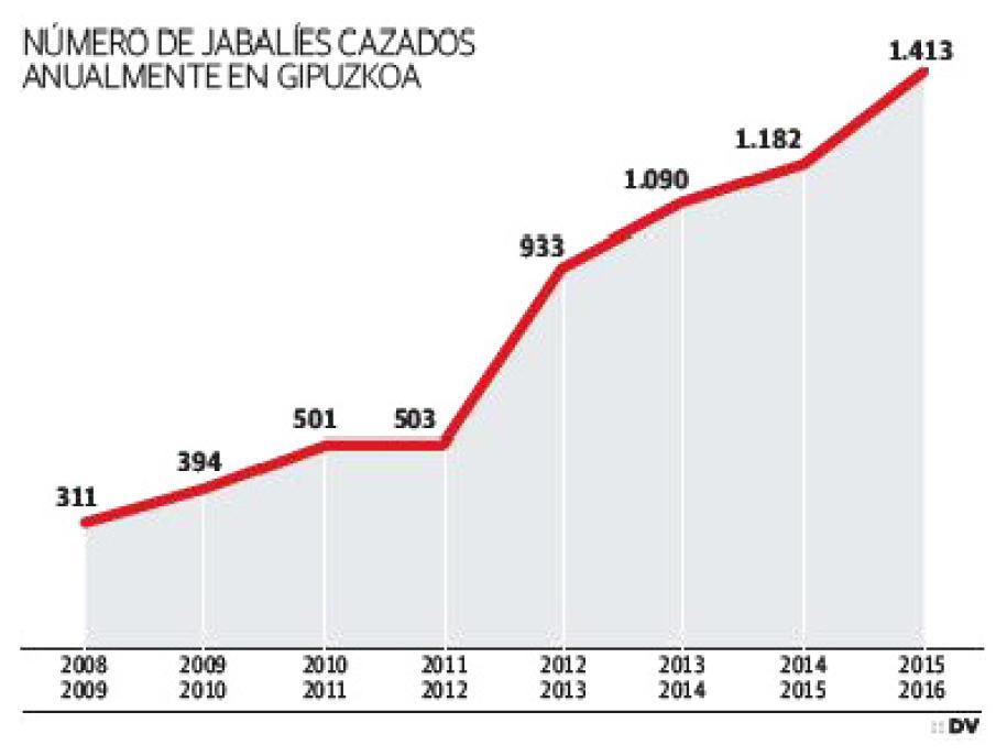 Jabalíes cazados anualmente en Guipúzcoa / Diario Vasco