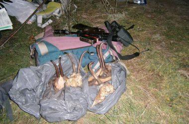 Material decomisado al furtivo en el Pirineo leridano / Agents Rurals