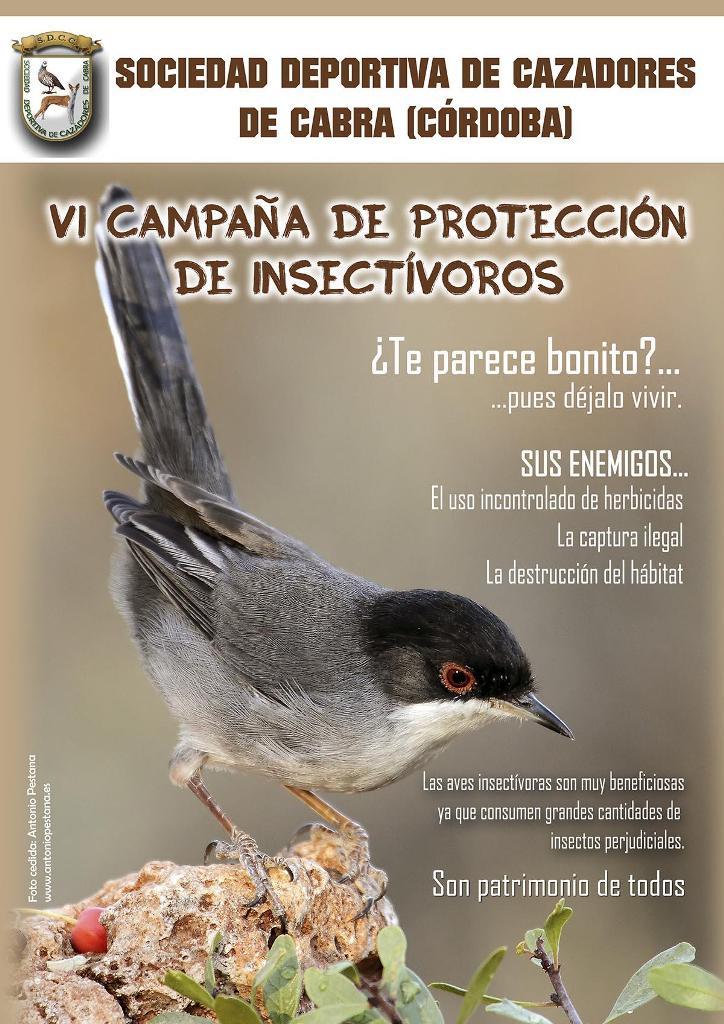 campana-proteccion-insectivoros