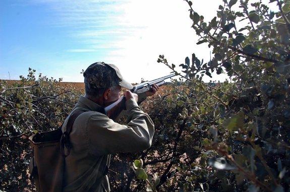 Un cazador, pertrechado en un puesto, preparado para abatir un zorzal. /Sur