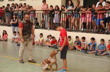 La Federación Andaluza de Caza traslada conceptos relacionados con la tenencia responsable de un perro a los escolares andaluces.