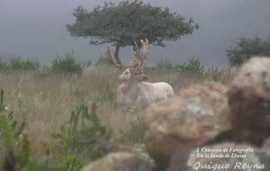 Fotografía de Edgar Enrique Reyna
