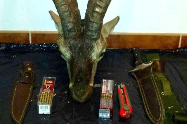 Macho montes, munición y cuchillos incautados en la operación contra el furtivismo.