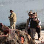 Un futuro montero y su madre junto a uno de los jabalíes cobrados en Campete.