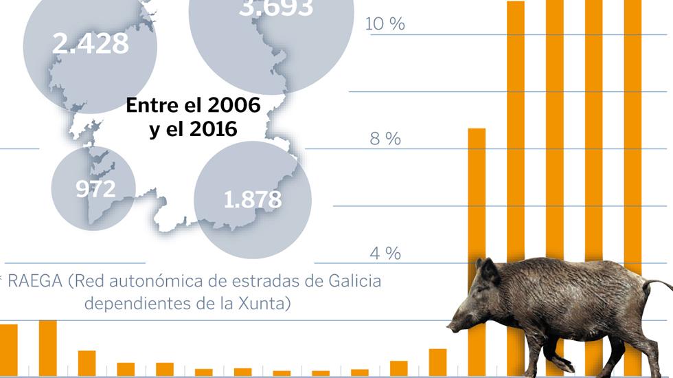Estadísticas de los accidentes por atropello de jabalíes en Galicia / La Voz de Galicia
