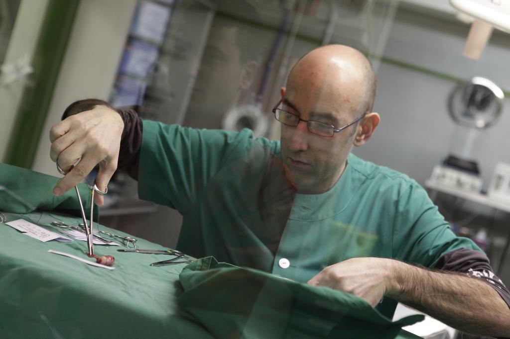 El veterinario Pedro Pablo Mayo extrae esperma de los testículos de un perro.