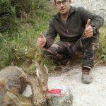 Uno de los mejores trofeos de corzos cazado en Zaragoza.