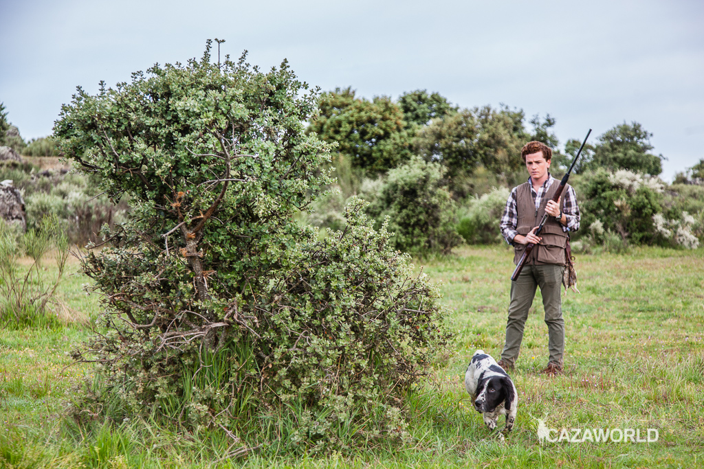 Iniciación del cachorro en la caza con piezas de granja 6