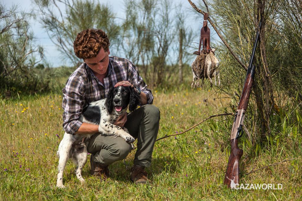 Iniciación del cachorro en la caza con piezas de granja 9 springer cazador