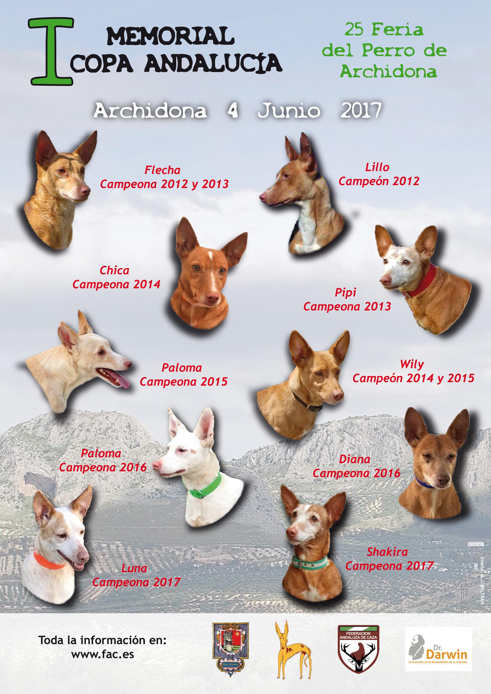 El Memorial Copa Andalucía de Podenco homenajeará al perro de caza ...