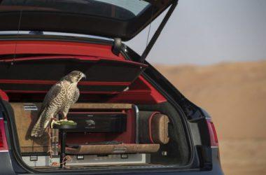 Bentley Bentayga Falconry un modelo suv de lujo para cetreros.