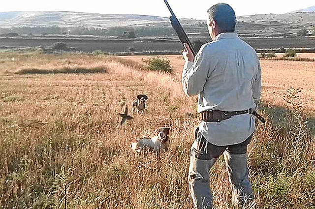 Un cazador en plena actividad / Heraldo