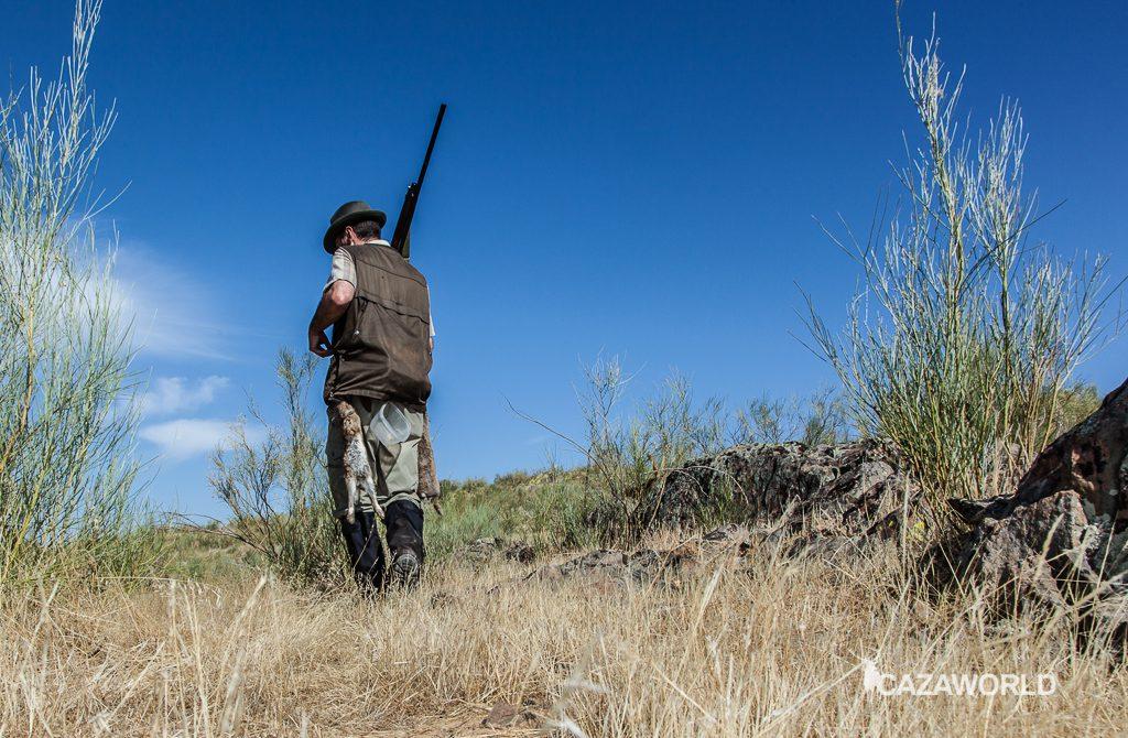 Un cazador y su percha durante una jornada de descaste de conejos / DPS