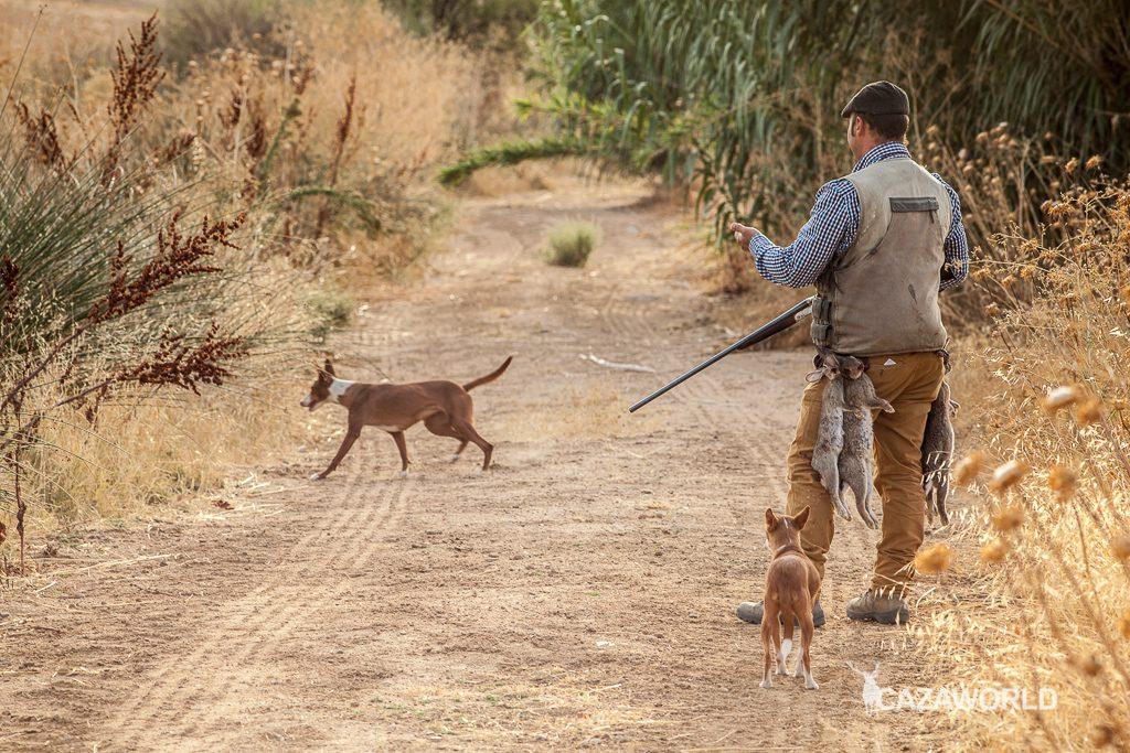 La caza en Castilla y León en duda tras un comunicado de la Federación de Castilla y León / DPS