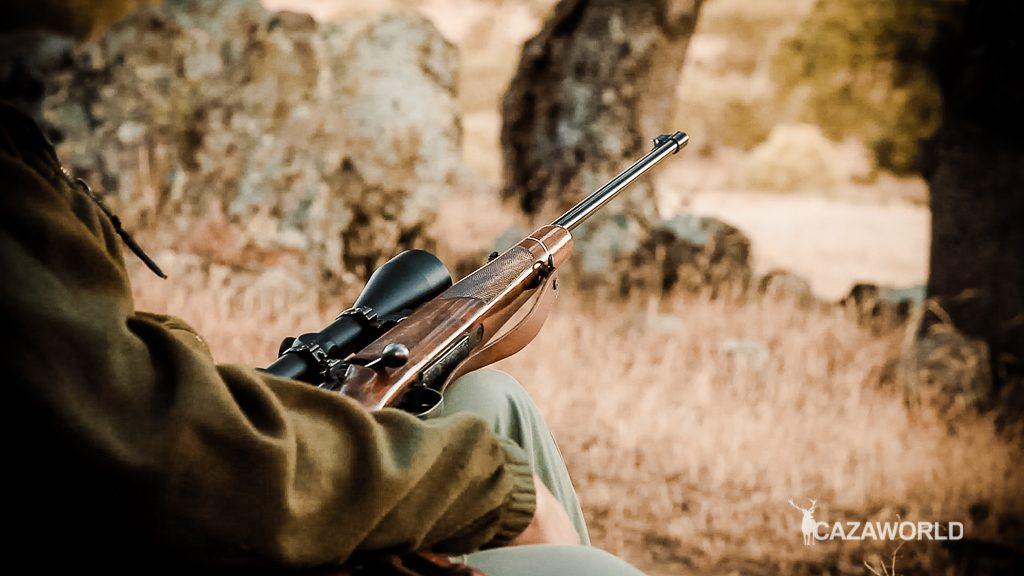 Un cazador sentado sujeta su rifle de cerrojo durante una espera de jabalí / DPS