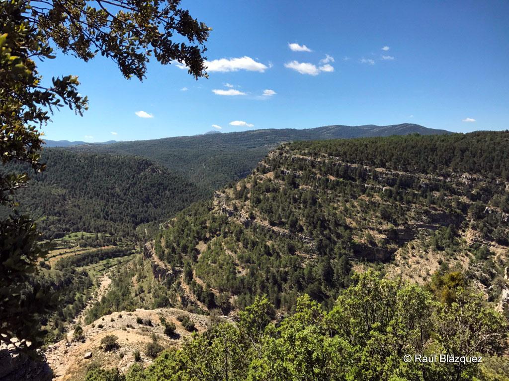 Montes de la serranía de Teruel para la caza del macho montés 2