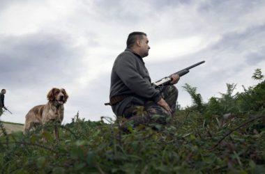 Un cazador junto a un bretón / Hoy