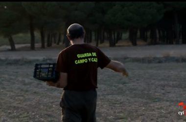 Un Guarda de campo reparte alimentos para la fauna silvestre.