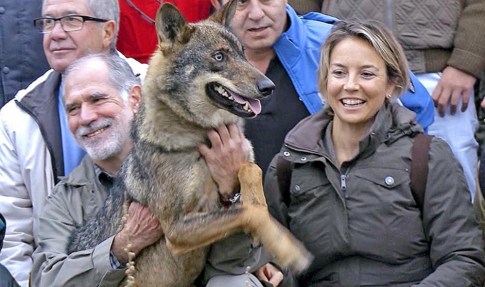 Odile Rodríguez de la Fuente, en una reciente visita a Segovia, en el marco de unas jornadas dedicadas al lobo ibérico. / Argicomunicación