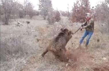 El cazador se defiende como puede del ataque del jabalí.
