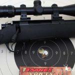 Agrupación del rifle Compass