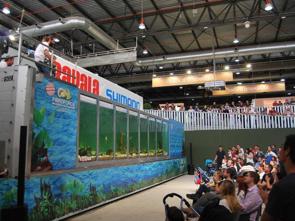 Gran acogida de público en las actividades celebradas en Feciex