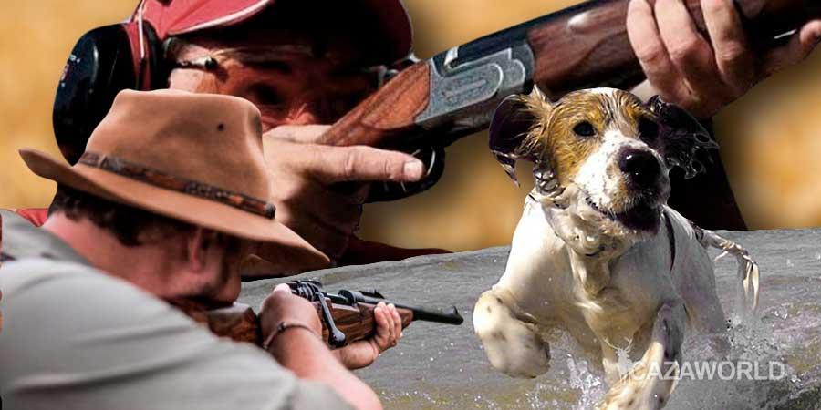 Escopeta, rifle y perro de caza